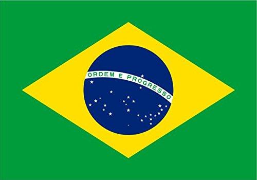 Bandera de Brasil DE 5 * 3 pies/150 * 90 cm Bandera de poliéster Ideal para Exterior e Interior Gran Bandera Brasileña