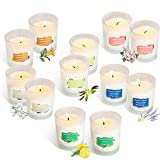 YIIA Scented Candles 12 Pack Gift Set, Aromatherapy Set of Fragrance Soy Wax, 12-15 Hours ...