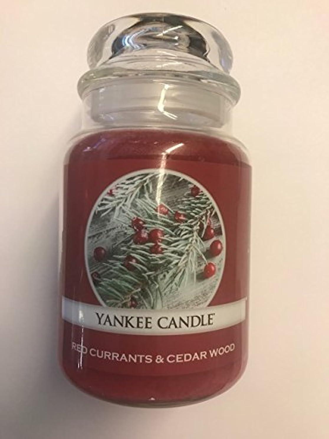 審判クレア脚Red Currants & Cedar Wood Yankee Candle / 22?0z