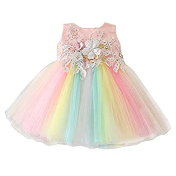 Bow Dream Baby Girls Party Dress Rainbow Tulle 3D Embroidery Beading Princess Wedding Dresses for 0-24 Months Pink 3-6 Months
