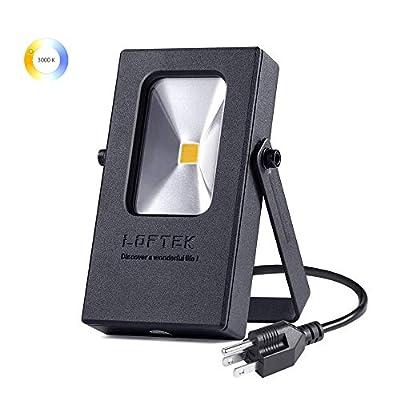 LOFTEK 10W Outdoor Plug in Light