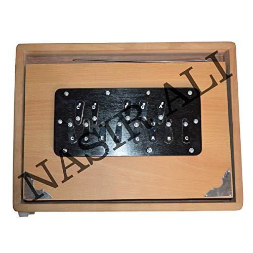 INDISCHE INSTRUMENTE, Shruti Box, groß (14 x 11 x 2,5) Zoll, Surpeti Surpeti, mit Tasche, Cremefarbe, Musikinstrument Indianer