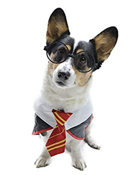 Impoosy Halloween Dog Costume Wizard Funny Pet Clothes Cat Hoodies for Dogs Cats Accessories with Glasses  Large,Neck 18