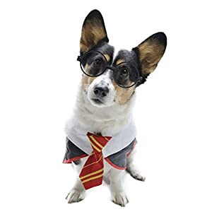 Impoosy Pet Dog Shirts Funny Cat Wizard Costume Cute Apparel Soft Clothes with Glasses
