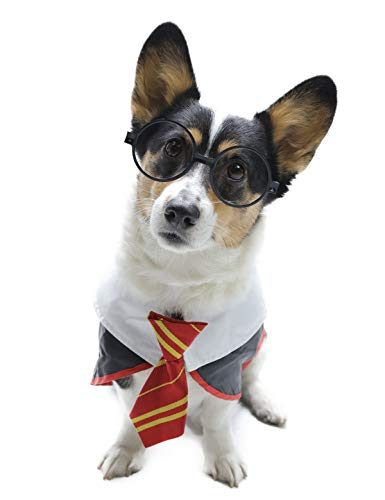 Impoosy Pet Dog Shirts Funny Cat Wizard Costume Cute Apparel Soft Clothes with Glasses (X-Large)