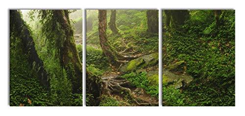 Pixxprint Tropischer La Selva Dschungel als XXL Leinwandbild in Übergröße 180x80cm Gesamtmaß 3 teilig/Wandbild/Kunstdruck