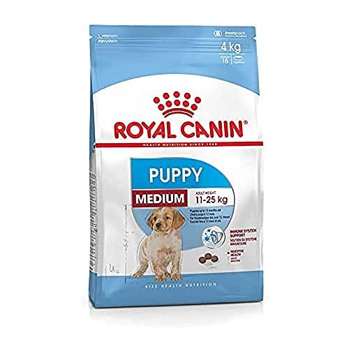 Royal Canin, comida para perro medium junior, 15kg
