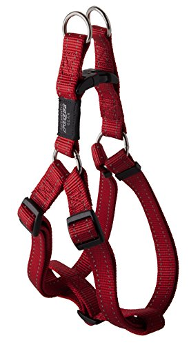 Step-in Harness Safest