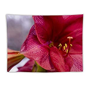 VinMea Tapestry Hanging Wall Decor,Amaryllis Petals Artificial Blossom Flower Tapestry Wall Hanging Tapestry Blanket Decorate for Home Bedroom Seat 60″x80″