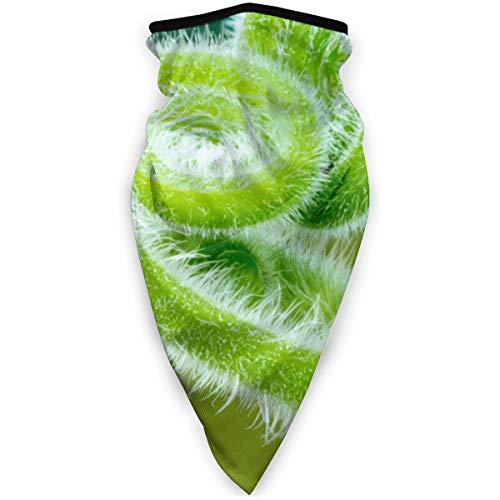 YudoHong Sciarpa del Collo Archetto Viticcio Pianta rampicante Macro Sciarpa Senza Cuciture, Collare Silenziatore Sciarpa Maschera, Foulard, Fasce per la Testa