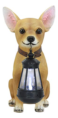 """Ebros Picante Mexican Chihuahua Dog Decor Path Lighter Statue 12.5""""Tall with Solar LED Light Lantern Lamp This Little Light of Mine"""