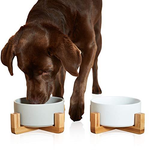 PiuPet® 2 x Napf für Katzen und Hunde - je 850 ml - Futternapf Katze - Futternapf Hund - Hundenapf Grosse Hunde 2er Set