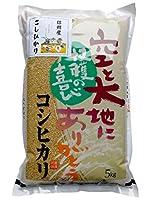 【玄米】信州産 こしひかり 5kg 令和2年産