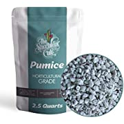 Horticultural Grade Pumice (2.5 Dry QUARTS) - Bonsai, Cactus, Succulent Soil Additive - Eliminate Root Rot - Ready to Use, by The Succulent Cult