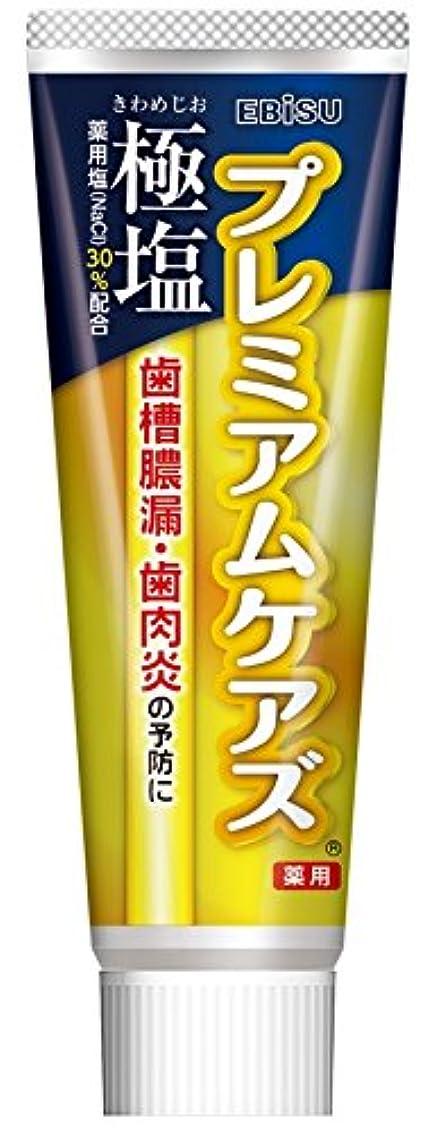 道忘れられない先見の明エビス 歯磨き粉 極塩 プレミアムケアズ 100g