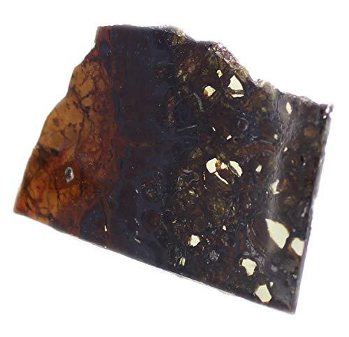 budawi® - Pallasit Scheibe Jepara Meteorit 15g Asteroid Meteoritenstein