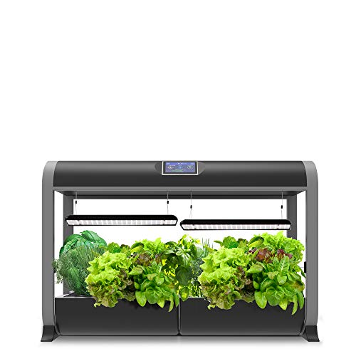 AeroGarden Farm 24Basic w/Heirloom Salad Greens