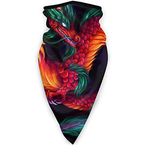 BJAMAJ Masque facial et bouche, motif dragon chinois, coupe-vent, sport, masque de ski, écharpe, bandana pour homme et femme