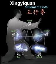 Xingyi Quan 5 Element Fists Xing Yi Hsing-i