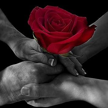 Le Rose`