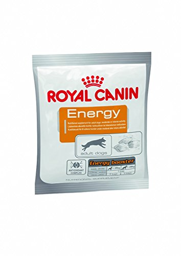 ROYAL CANIN Dog Food Dog Energy Dry Mix 50g (Confezione da 30)