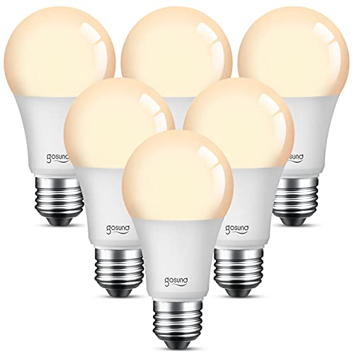 Smart Light Bulb Compatible with Alexa Google Home, WiFi LED Dimmable Warm White 2700K A19 E26 800 Lumens, 8W(75W Equivalent), No Hub Required, 2.4GHz WiFi Only, 6 Pack
