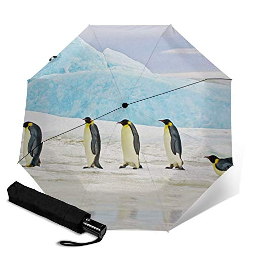 Penguin,Sun & Rain Travel Umbrella - Lightweight Compact Umbrella with UV Protection for Men and Women Multiple Colors