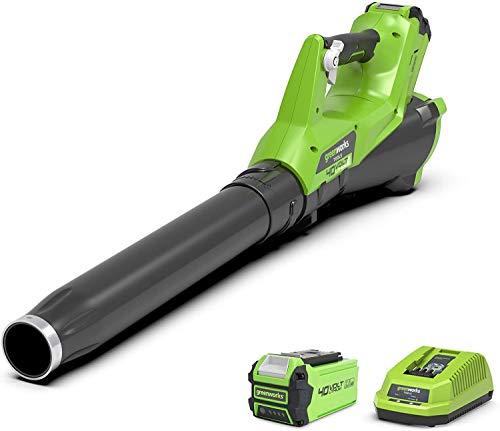 Greenworks Tools 40 V Soffiatore Fogliaceo Assiale a Batteria G40AB, Li-Ion 40V 177 km/h Potente Soffiatore Assiale ad Aria con Controllo Elettronico della Velocità (1x batteria 2.5Ah)