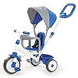 Triciclo Trike Triciclo, cuatro triciclo para bebés, con palanca de empuje ajustable, techo móvil, pedal retráctil, el pedal con bloqueo, barandilla extraíble, adecuado para niños menores de 14 años