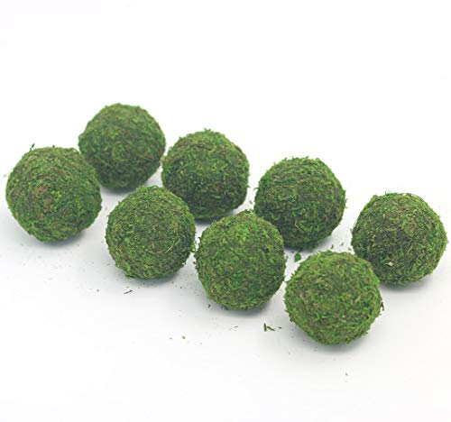 Nice purchase Handmade Natural Green Plant Moss Balls Decorative for Home Party Display Decor Props (2 in)