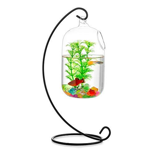 Glasseam Pecera Colgante De Vidrio Tanque Beta De Pared con Soporte Casas De Peces Florero Creativo Acuario para El Hogar Jardín Escritorio Betta Fish Moss