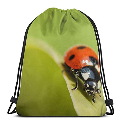 Ladybug Nature Macro - Mochila unisex con cordón, bolsa de cincha de poliéster, impermeable, para deporte, gimnasio, mochila informal para mujer