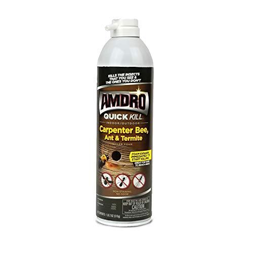 Amdro 100530435 Quick Kill Carpenter Bee, Ant, and Termite Killer Foam, 18 OZ