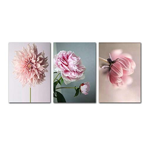 zhaoyangeng Scandinavische schoonheid leven roze bloemen afbeeldingen modulaire wand kunstdruk canvas schilderij voor moderne wooncultuur - 50X70Cmx3 zonder lijst