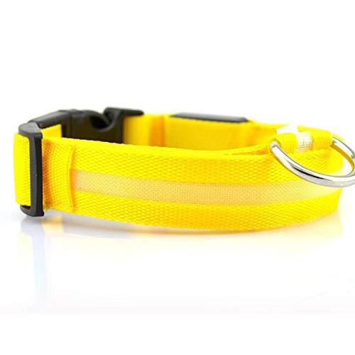 Yuan Ou Collar de Perro USB Recargable Perro Mascota LED Collar Brillante Mascota Collar Luminoso Intermitente al Aire Libre Caminar Perro Noche Suministros de Seguridad