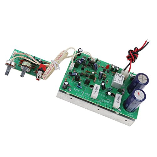 Backbayia 150 W Rate-Verstärker Mono Subwoofer-Modul Einkanal