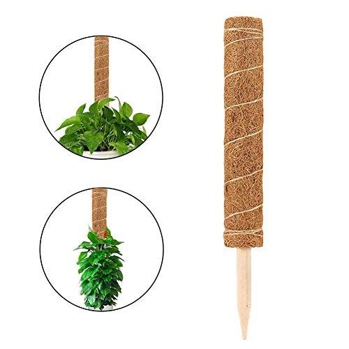 Dinapy Pflanzstab Kokos, Rankstab Rankhilfe Blumenstab Kokosstab, Zur Dekoration, Aus Natürlicher Kokosfaser, 40cm /50cm