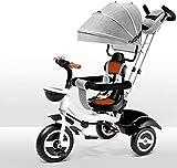 LOXZJYG Triciclo con, multifunción de Cochecito de Cochecito de Cochecito Anti-Shock bebé Trolley de Triciclo Compacto, reposapiés Plegable y cinturón de Hombro para niña, bebé bebé