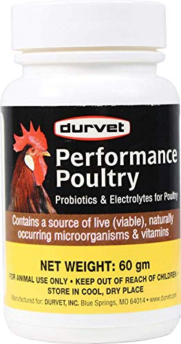 Durvet Healthy Flock Poultry Probiotics and Vitamins
