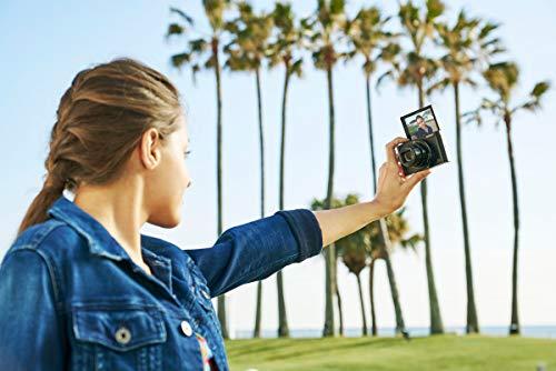 Sony Cybershot DSC-WX500/B 18.2MP Digital Camera (Black)