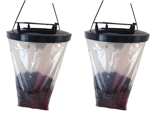 Fly trap outdoors (2 pack, made in UK) , this Fly catcher catches x 5 more...