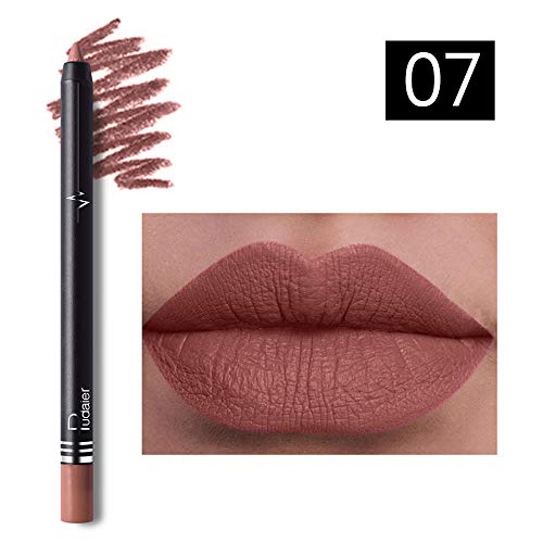 26 couleurs Crayon à lèvres Femme Imperméable Lipliner professionnel Maquillage Imperméable Crayon à lèvres Cosmétique Présent