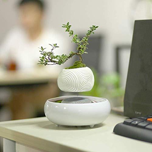 LXYZ Levitating Air Bonsai Pot - Magnetischer Levitationuspension Blumen- und Luft-Bonsai-Topf