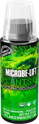 MICROBE-LIFT Plants P - Fertilizante líquido para Plantas de Acuario, Alta concentración, 118 ml