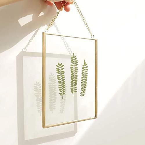 FunPa - Marco de flores prensado para manualidades, para muestras de plantas secas, flores secas, marco de cristal doble, marco de...