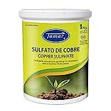 Tamar 347220 Sulfato de Cobre, 1 kg