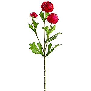 SilksAreForever 16.5″ Mini Silk Ranunculus Flower Stem -Beauty (Pack of 12)