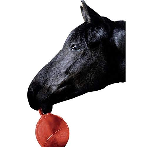 HKM Balle de jeu pour cheval Rouge Ø 25 cm