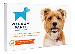 Wisdom Panel Dog DNA & Health Testing Kit