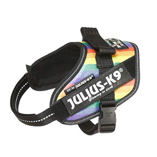 Julius-K9 16IDC-JRBW-MM IDC Powerharness, Dog Harness, Size Mini-Mini, Rainbow